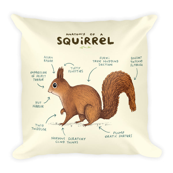 Anatomy of a Squirrel Pillow