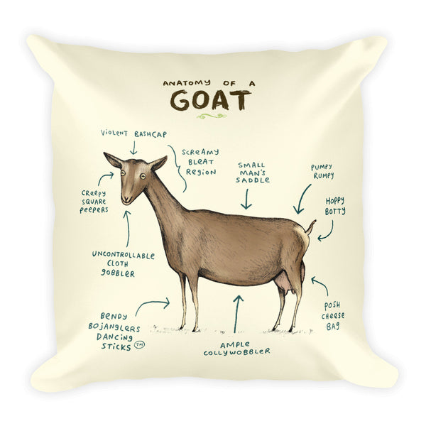 Anatomy of a Goat Pillow