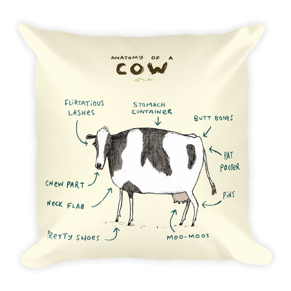 Anatomy of a Cow Pillow