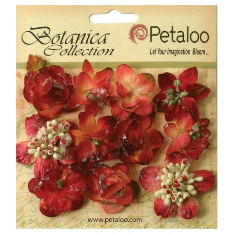 Petaloo Botanica Sugared Mini Blooms Burgundy