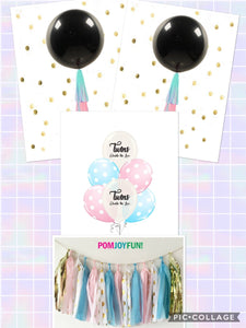 Twins Gender Reveal Ideas Decorations, Twins Gender Reveal Balloons, Tassel Garlands and Cake Topper Kit, Twins Gender Reveal Balloons