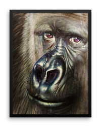 Gorilla Framed Poster Print Detailed Realistic Gorilla Wall Art-Framed Poster Prints-4Endangered