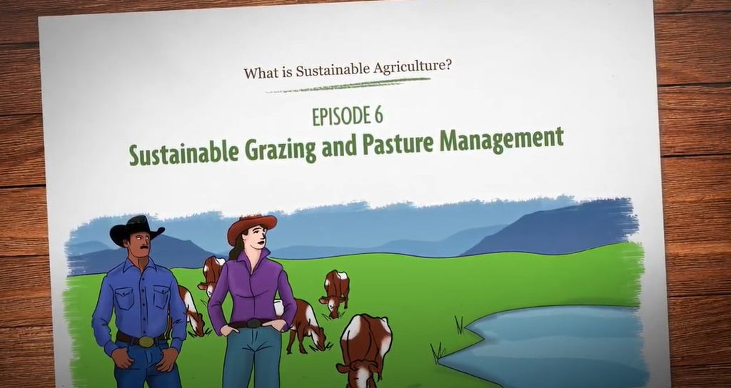 Sustainable Ranching and Pasture Management