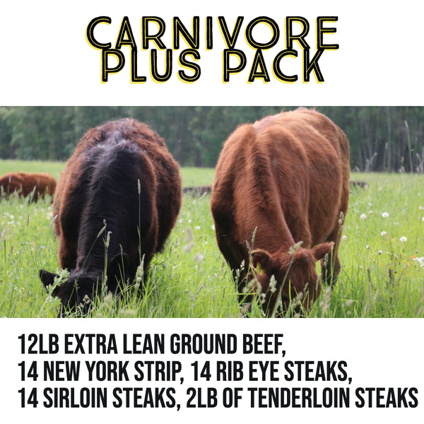 Carnivore Plus Pack- Organic, Grass Finished- 35 lb of Beef