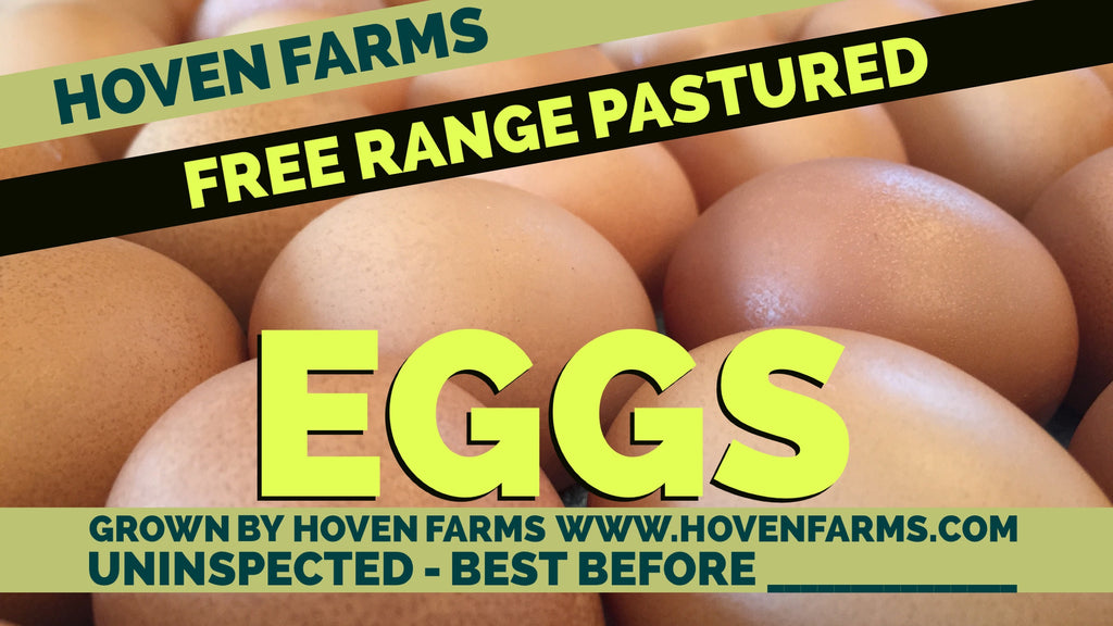 Free Range Pastured Eggs
