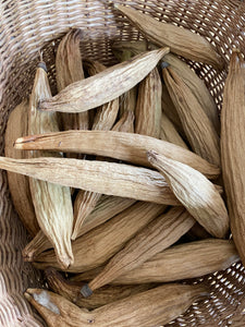 Kapok Cotton Pods