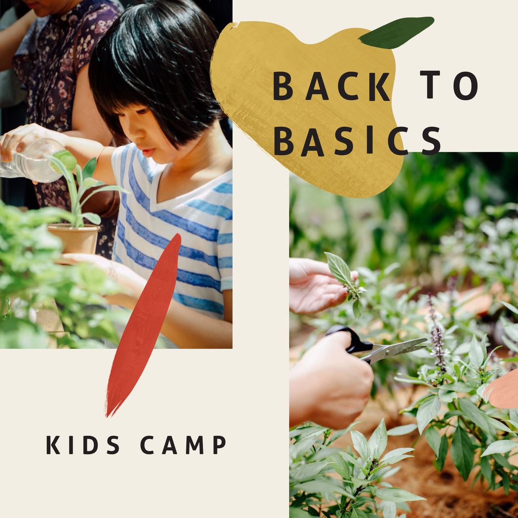 Back to Basics Kids Camp (Nov/Dec 2018)