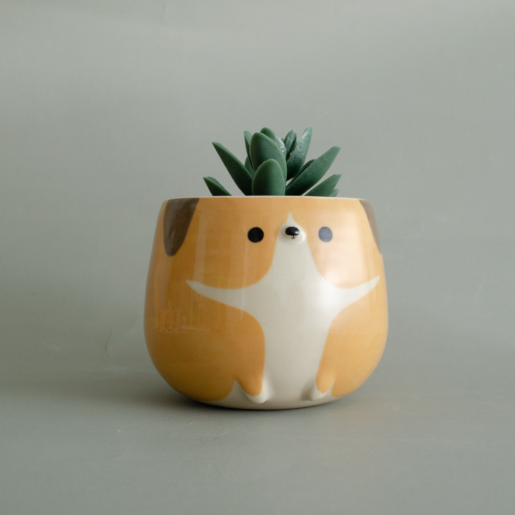 Cheer Up, Butter Pup Planter