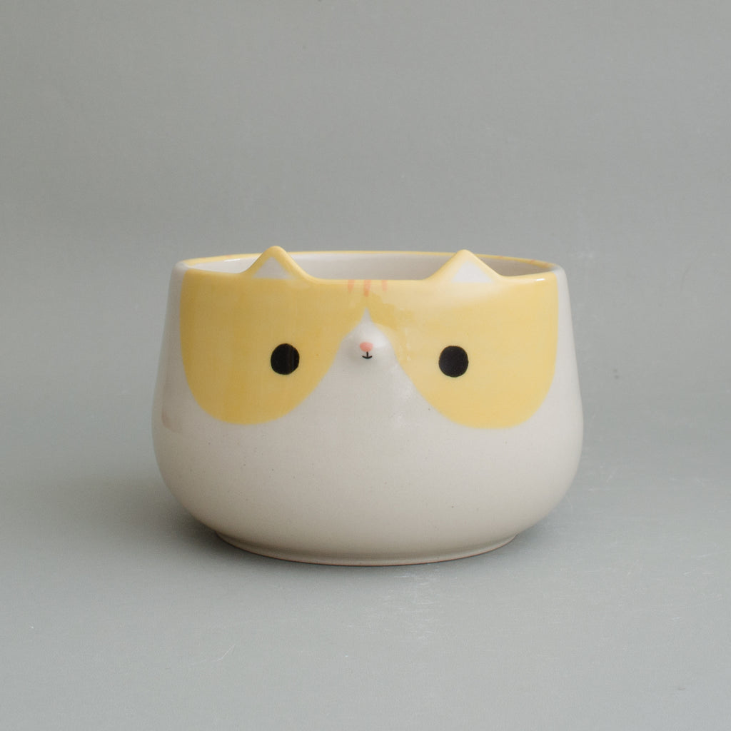Mango Kitty Bowl