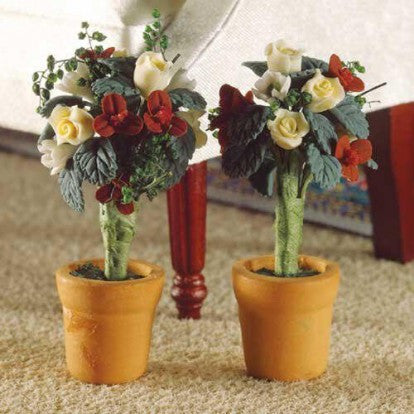 Two Standard Roses in Pots