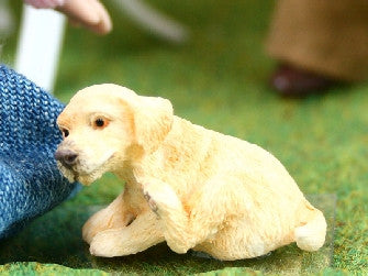 Dolls House Miniature Golden Retriever Pup, Pets and Animals - The Dolls House Store