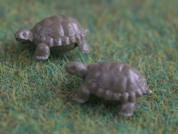Dolls House Miniature Set Of 6 Plastic Tortoises, Pets and Animals - The Dolls House Store