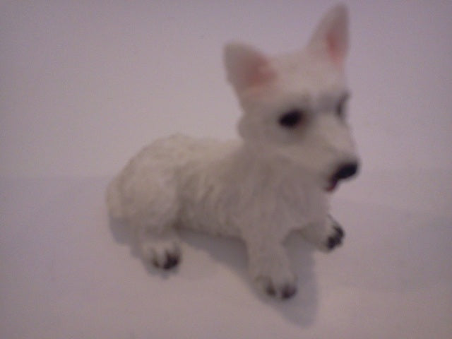 Dolls House Miniature Single White Laying Down Dog, Pets and Animals - The Dolls House Store