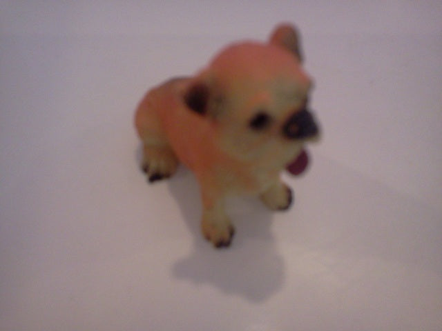 Dolls House Miniature Single Cream & Brown Dog, Pets and Animals - The Dolls House Store