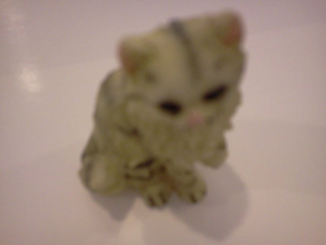 Dolls House Miniature Single Cream & Black Stripped Cat, Pets and Animals - The Dolls House Store