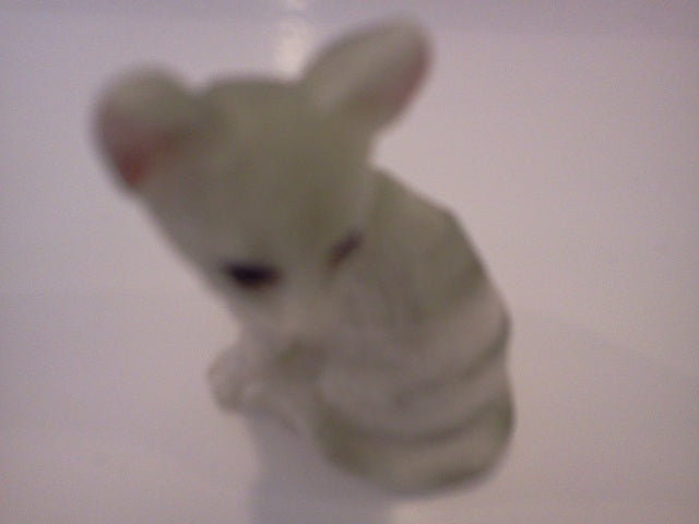 Dolls House Miniature Single Cream/White & Black Stripped Single Cat, Pets and Animals - The Dolls House Store