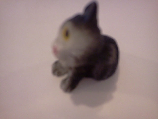 Dolls House Miniature Single Kitten Black and White Iching With Back Paw, Pets and Animals - The Dolls House Store