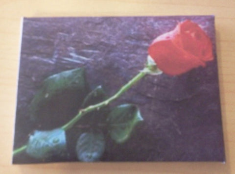 Dolls House Miniature Canvas Of Red Rose, Paintings - The Dolls House Store