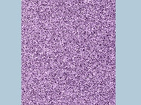 Dolls House Miniature Lilac Carpet, Flooring - The Dolls House Store