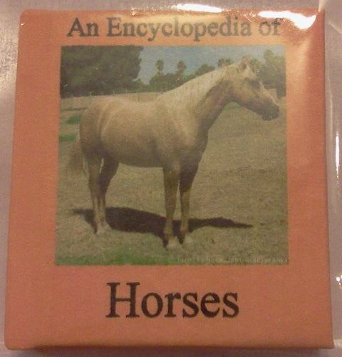 Dolls House Miniature Horses Illustrated Book, Miniature Books - The Dolls House Store