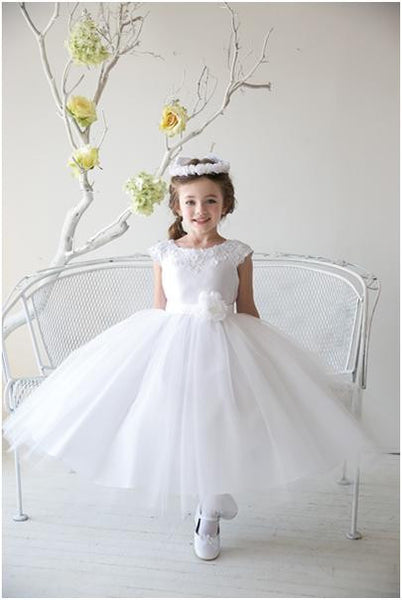 Mississauga Lace and tulle dress