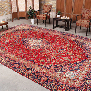 8x12 Wool Oriental Red And Blue Handmade Persian area rugs