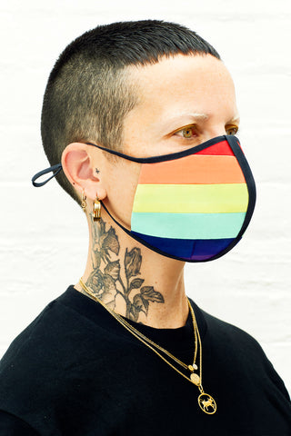 Rainbow Gay Pride face mask