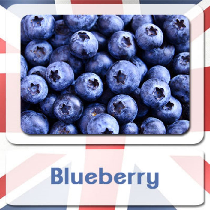 Ultimate Version 2 - Blueberry (10ml Bottle) | e liquid