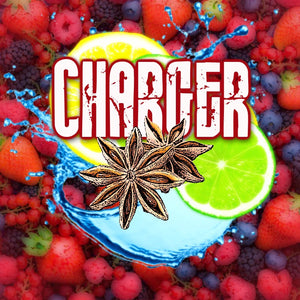 Vampire Vape - Charger (100ml eliquid)