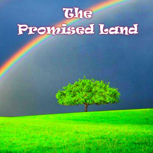 The Promised Land - 100ml bottle of e liquid made in the UK