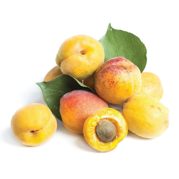 Apricot ( eliquid | ejuice )