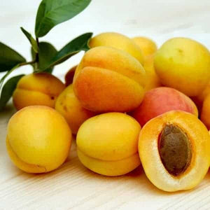 Armenian Apricot - 30ml Flavour Concentrate