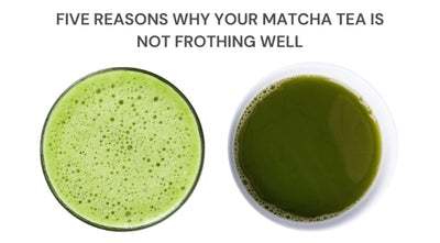 Five reasons why your Matcha tea is not frothing well