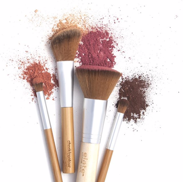 APPLICATION BRUSH: COSMETICS
