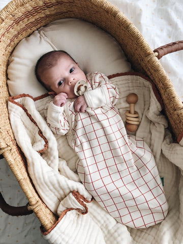 Newborn baby in a Moses basket wearing a sleep sack