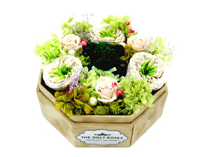 White Lint Octagonal Box with Preseved English Roses and Bear - The Only Roses