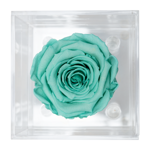 Tiffany Blue Preserved Rose | Petite Acrylic Rose Box - The Only Roses