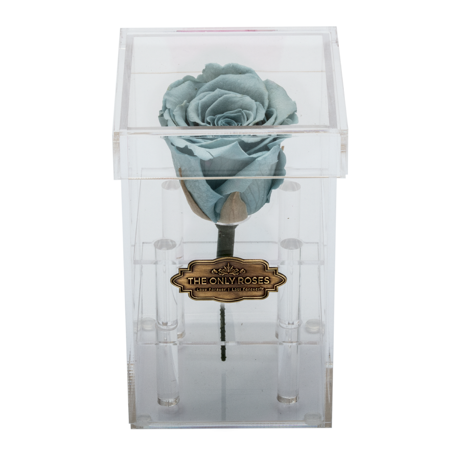 Light Blue Preserved Rose | Petite Acrylic Rose Box - The Only Roses