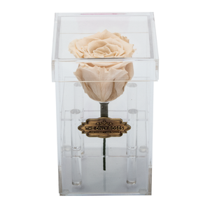 Peach Preserved Rose | Petite Acrylic Rose Box - The Only Roses