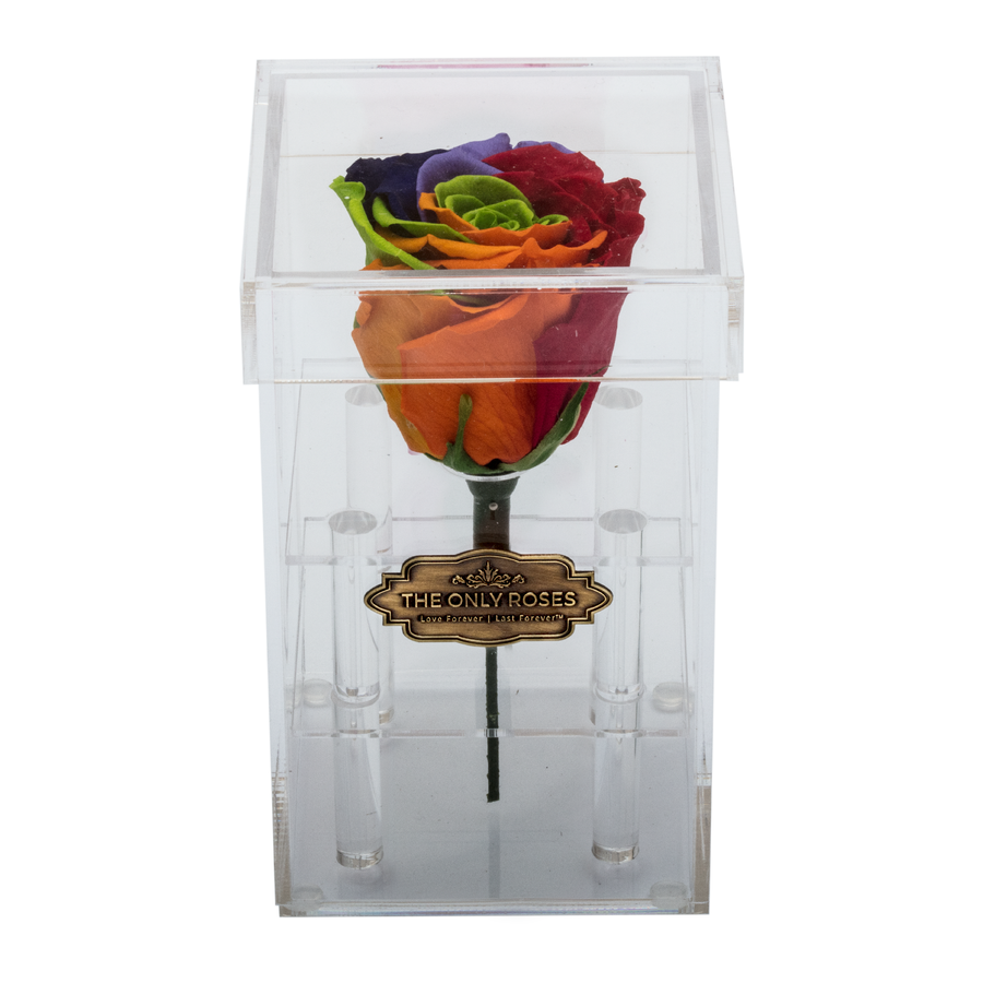 Rainbow Preserved Rose | Petite Acrylic Rose Box - The Only Roses