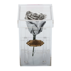 Silver Preserved Rose | Petite Acrylic Rose Box - The Only Roses