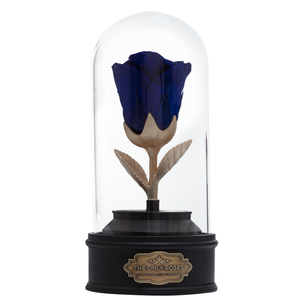 Royal Blue Preserved Rose | Beauty and The Beast Music Globe - The Only Roses