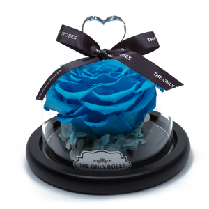 Blue Preserved Rose | Glass Dome with Heart Handle - The Only Roses