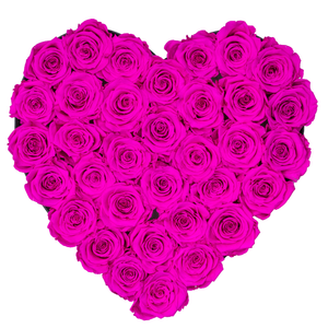 Hot Pink Preserved Roses | Heart Black Huggy Rose Box - The Only Roses