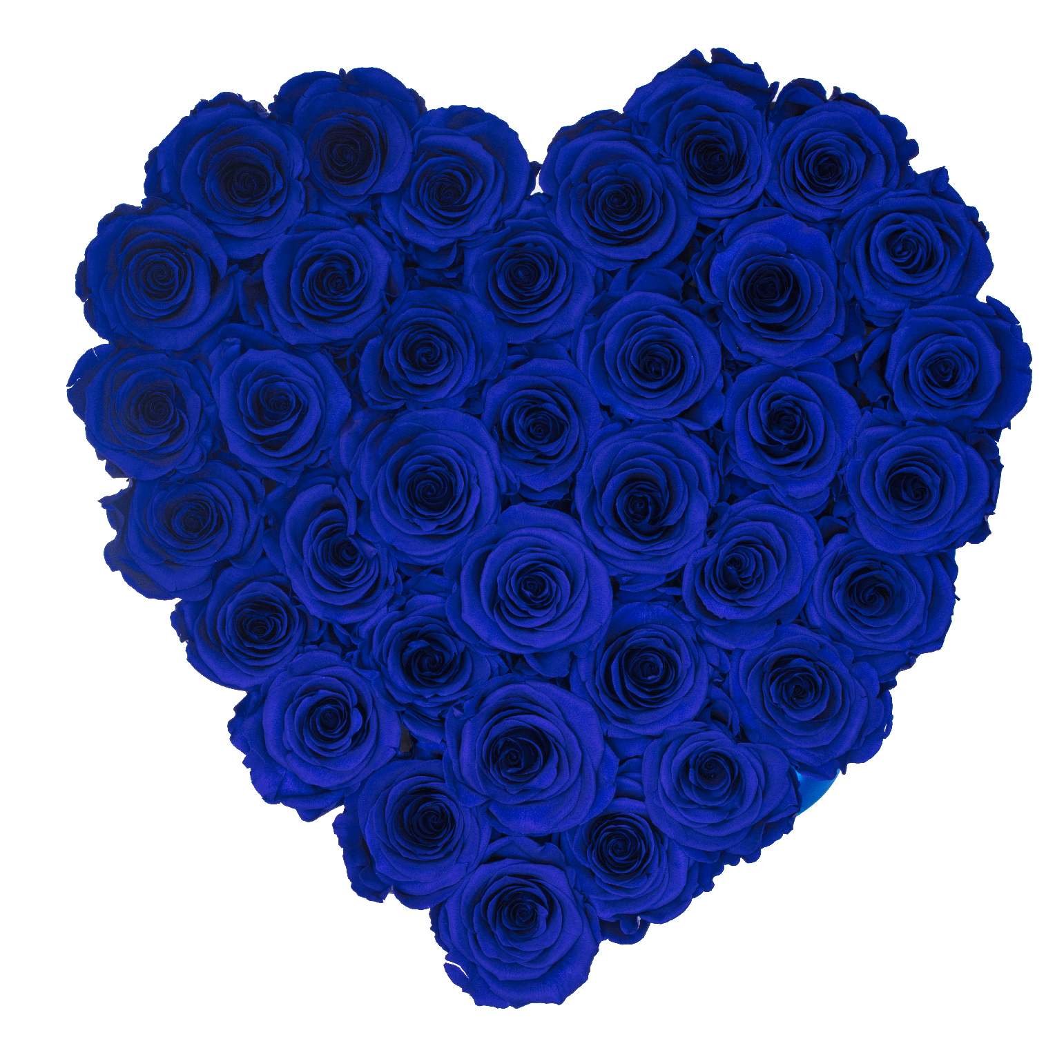 Rose Last A Year Royal Blue Preserved Roses White Heart Huggy Box