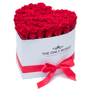 Red Preserved Roses | Heart White Huggy Rose Box - The Only Roses