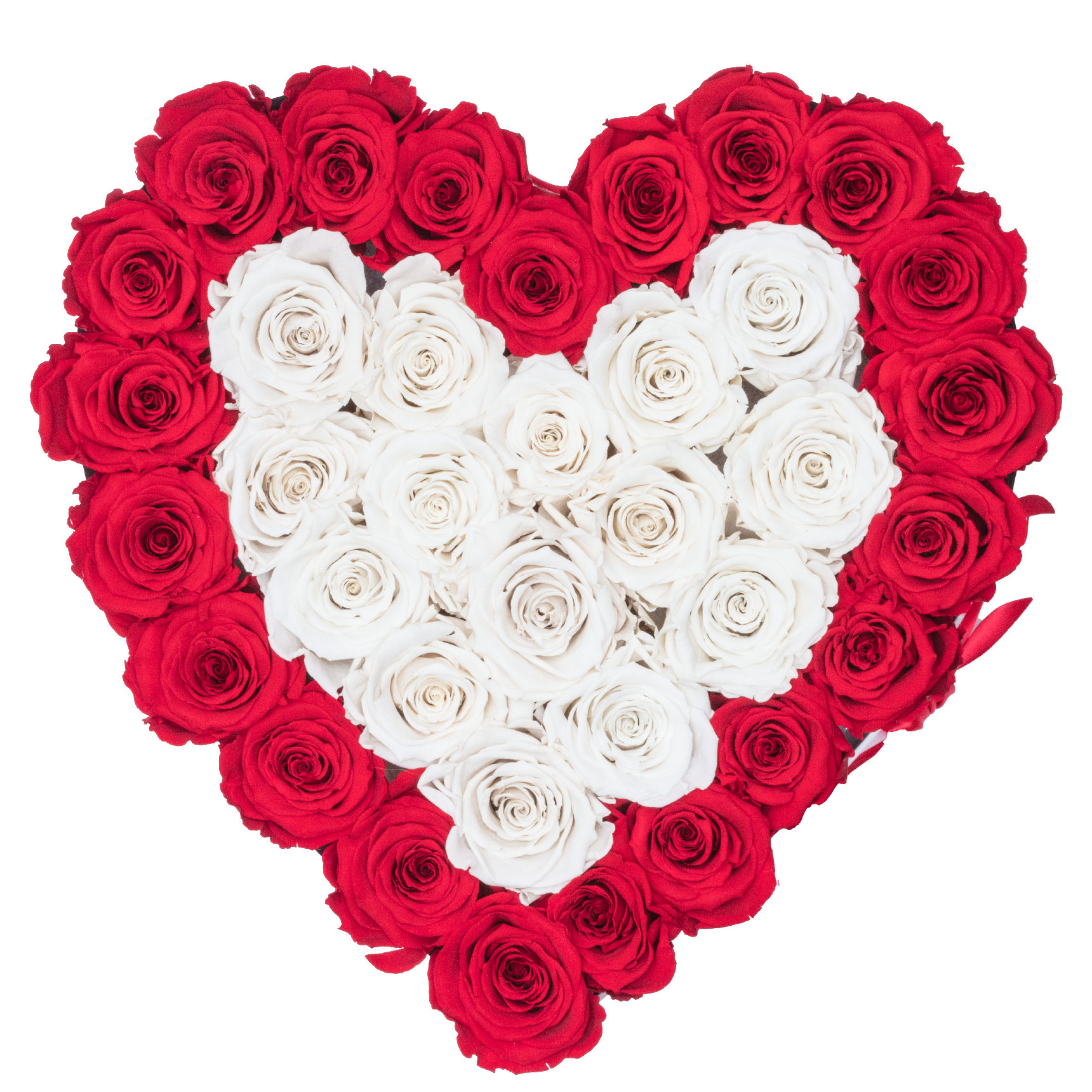 Rose Last A Year Red And White Preserved Roses White Heart Huggy