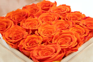 Special Edition Orange Lint Square Box with Orange Preserved Roses - The Only Roses