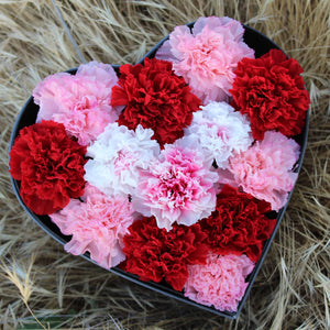 Preserved Real Carnations | Small Heart Classic Grey Box