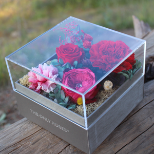 Preserved Real Red Carnations Arrangement | Crystalline Rose Box